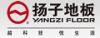 扬子陶瓷强化地板